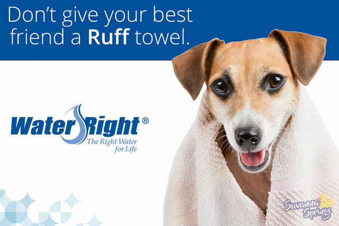 Savanna Springs Blog Ruff Towel
